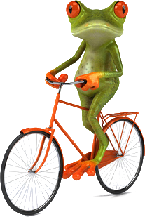 frosch-velo.png